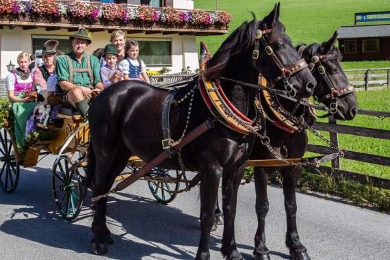Pferdekutschenfahrten, Sommerurlaub in Filzmoos